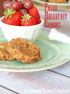 BreakfastCookies5.png