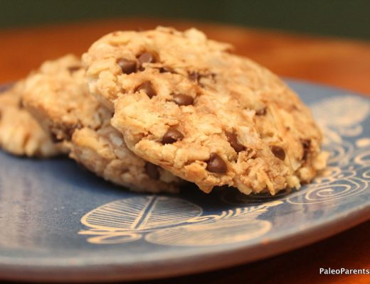 Coconut-Chocolate-Chip-Cookies-Featured-Image.jpg