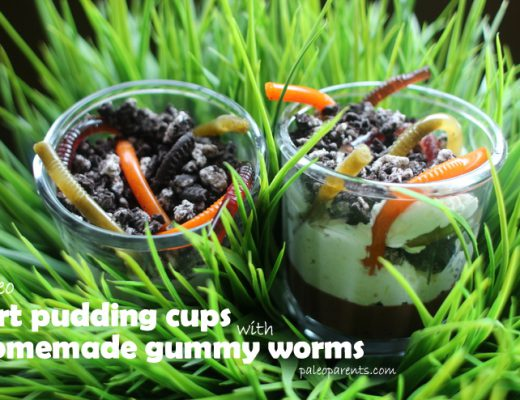 Dirt-Cups-and-Gummy-Worms-on-PaleoParents-01.jpg