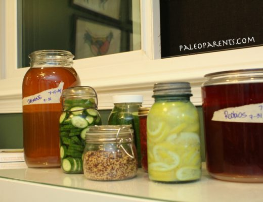 Fermented-Cookbook-Foods-by-PaleoParents.jpg