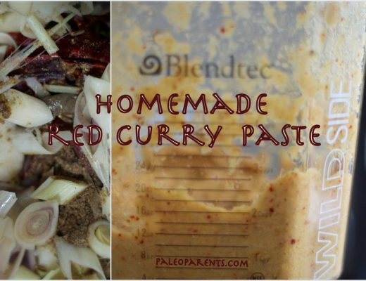 Homemade-Red-Curry-Paste-by-PaleoParents.jpg