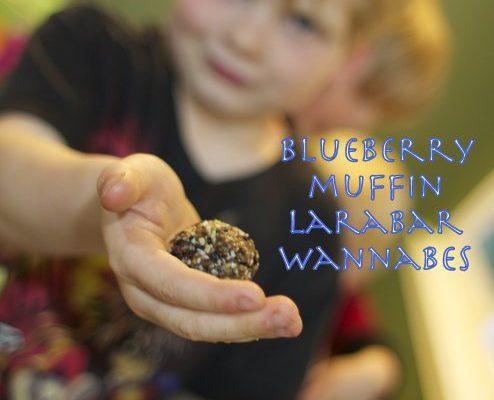 Nutfree-Blueberry-Muffin-LaraBar-Wannabes-by-PaleoParents.jpg