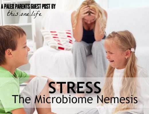 Stress-Microbiome-Nemesis-Feature.jpg