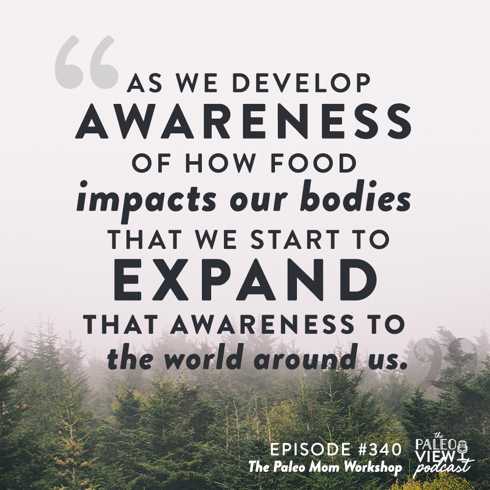 the paleo view podcast episode 340 the paleo mom workshop
