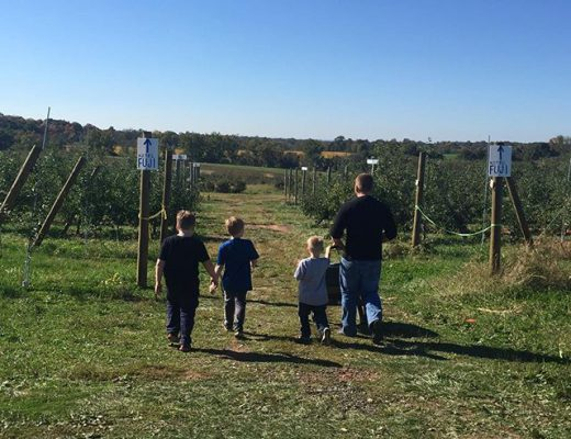 family-apple-pickin.jpg