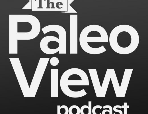 thepaleoview.png