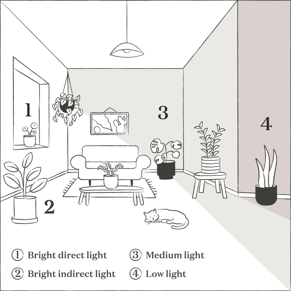 the sill's light guide