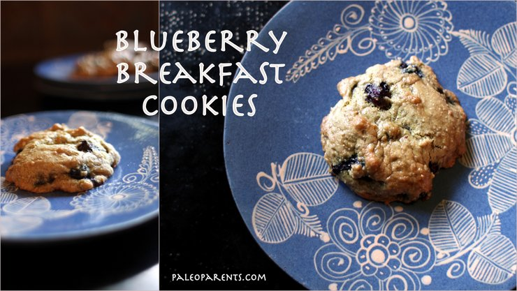 blueberry-breakfast-cookies, The Best Paleo COOKIE Recipes! | Real Everything