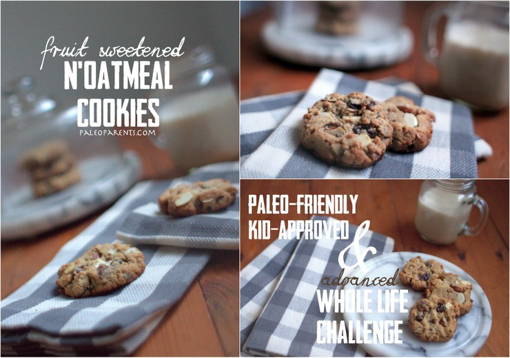 NOatmeal-Cookies-on-PaleoParents-com.jpg, Great travel snacks for the holidays- Paleo and Healthy!