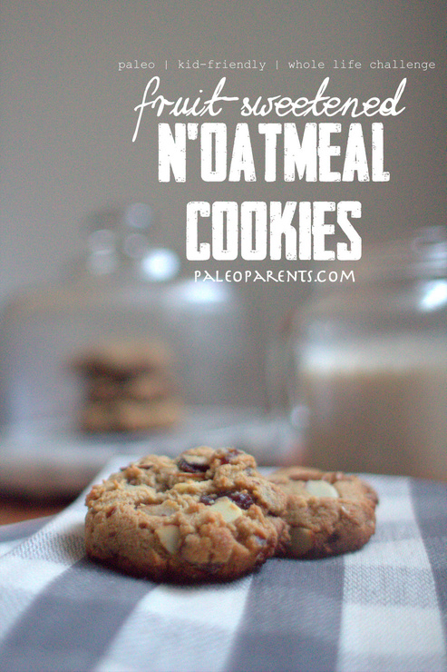 noatmeal_cookies_by_paleoparents-com, The Best Paleo COOKIE Recipes! | Real Everything